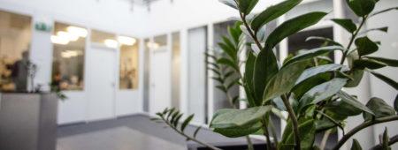 Datenschutzerklärung der ORION Versand GmbH & Co. KG
